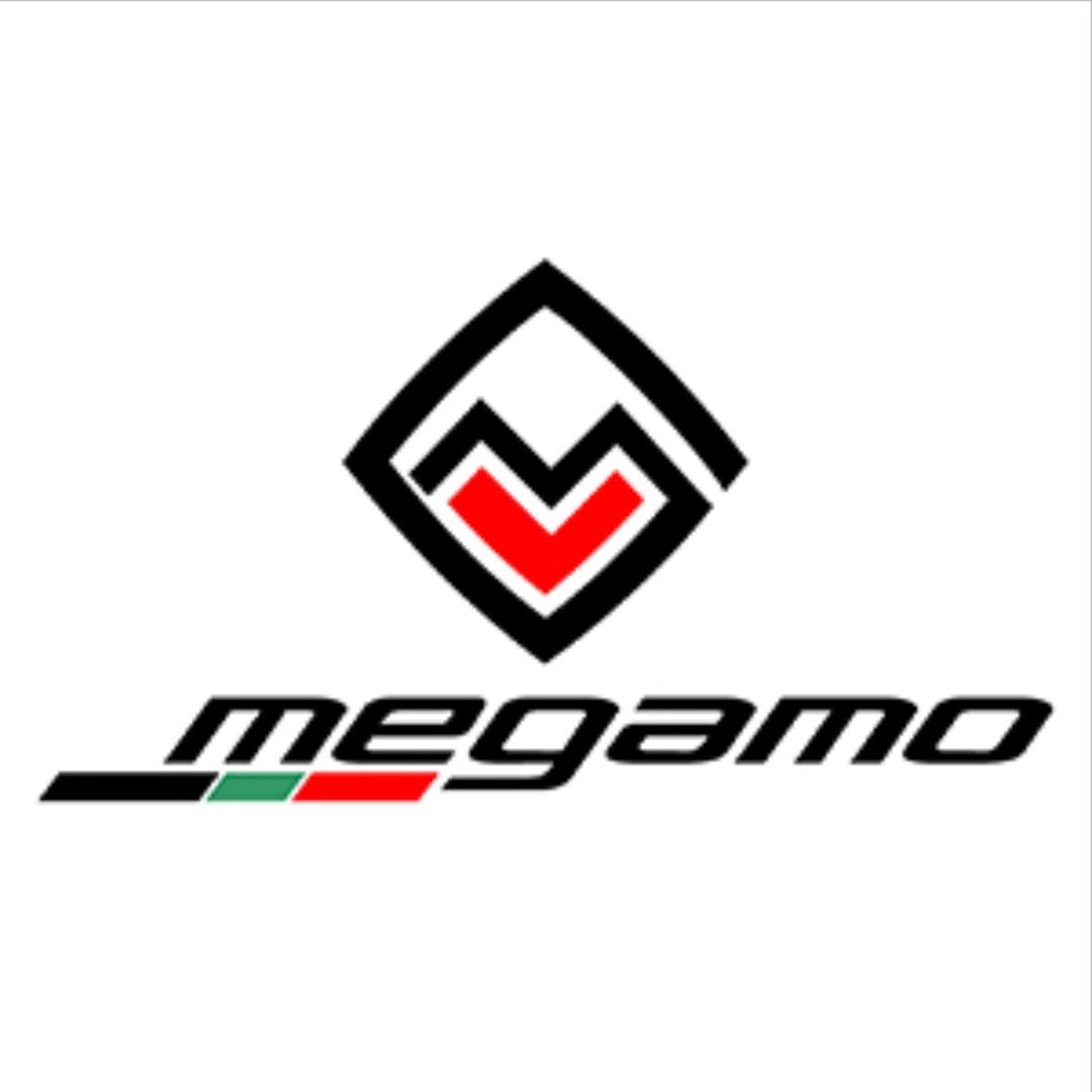 Megamone Logo